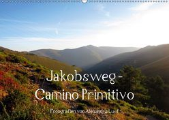 Jakobsweg – Camino Primitivo (Wandkalender 2019 DIN A2 quer) von Luef,  Alexandra