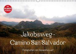 Jakobsweg – Camino San Salvador (Wandkalender 2019 DIN A3 quer) von Luef,  Alexandra