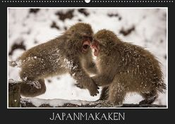 Japanmakaken (Wandkalender 2019 DIN A2 quer) von Schwarz Fotografie,  Thomas