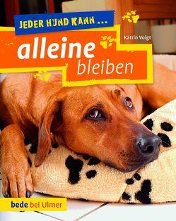 Jeder Hund kann alleine bleiben von Voigt,  Katrin