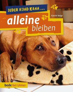 Jeder Hund kann alleine bleiben von Voigt,  Dr. Katrin