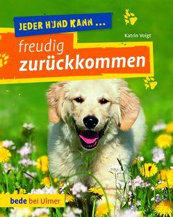 Jeder Hund kann freudig zurückkommen von Voigt,  Katrin