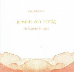Jenseits von richtig von Adamek,  Dr. Karl