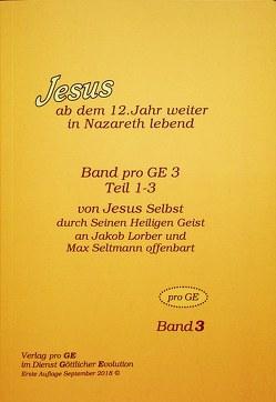 Jesus – Jugend-Evangelium Band 3 von Johannes,  Rudolf, Lorber,  Jakob, Seltmann,  Max
