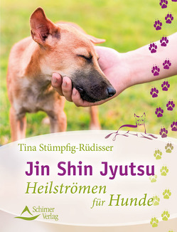 Jin Shin Jyutsu von Stümpfig-Rüdisser,  Tina