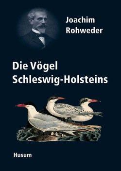 """Joachim Rohwedder (1841-1905) und die """"Vögel Schleswig-Holsteins"""" von Berndt,  Rolf. K."""