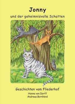 Jonny und der geheimnisvolle Schatten von Bornhövd (Illustrator),  Andreas, von Dorff,  Hanna