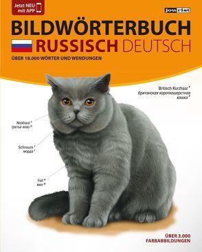 JOURIST Bildwörterbuch Russisch-Deutsch: 18.000 Wörter und Wendungen von Jourist,  Igor