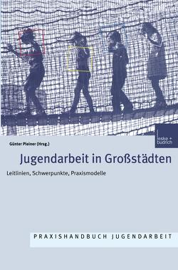 Jugendarbeit in Großstädten von Pleiner,  Günter