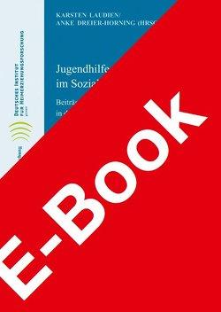 Jugendhilfe und Heimerziehung im Sozialismus von Dreier-Hornig,  Anke, Laudien,  Karsten