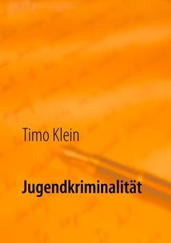 Jugendkriminalität von Klein,  Timo
