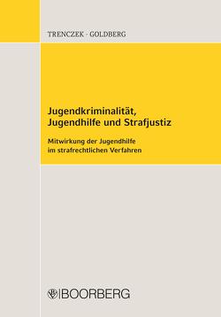 Jugendkriminalität, Jugendhilfe und Strafjustiz von Goldberg,  Brigitta, Trenczek,  Thomas