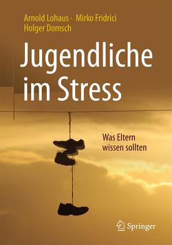 Jugendliche im Stress von Domsch,  Holger, Fridrici,  Mirko, Lohaus,  Arnold