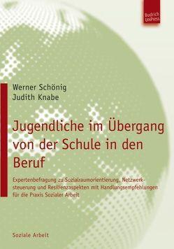 Jugendliche im Übergang von der Schule in den Beruf von Knabe,  Judith, Schönig,  Werner