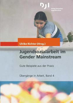 Jugendsozialarbeit im Gender Mainstream von Richter,  Ulrike