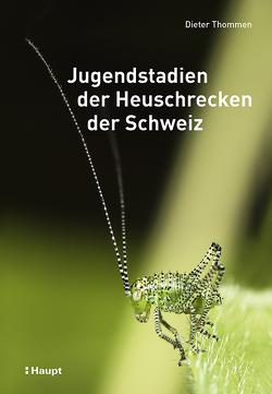Jugendstadien der Heuschrecken der Schweiz von Thommen,  Dieter