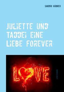 Juliette und Taddei eine Liebe forever von Hübner,  Sandro