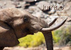 Jumbo Auf den Spuren der Elefanten in Namibia (Wandkalender 2019 DIN A2 quer) von Imhof,  Walter