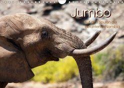 Jumbo Auf den Spuren der Elefanten in Namibia (Wandkalender 2019 DIN A4 quer) von Imhof,  Walter