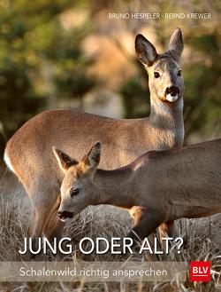 Jung oder alt? von Hespeler,  Bruno, Krewer,  Bernd