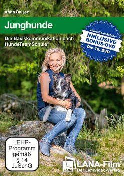 Junghunde von Balser,  Anita