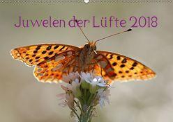 Juwelen der Lüfte 2018 (Wandkalender 2018 DIN A2 quer) von Witkowski,  Bernd