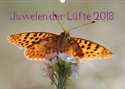 Juwelen der Lüfte 2018 (Wandkalender 2018 DIN A3 quer) von Witkowski,  Bernd