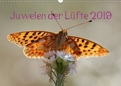 Juwelen der Lüfte 2019 (Wandkalender 2019 DIN A3 quer) von Witkowski,  Bernd