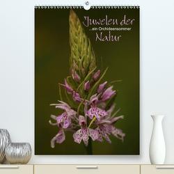 Juwelen der Natur – Ein Orchideensommer (Premium, hochwertiger DIN A2 Wandkalender 2021, Kunstdruck in Hochglanz) von Stamm,  Dirk
