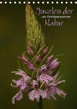 Juwelen der Natur – Ein Orchideensommer (Tischkalender 2020 DIN A5 hoch) von Stamm,  Dirk