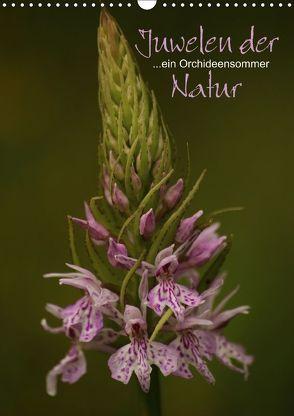 Juwelen der Natur – Ein Orchideensommer (Wandkalender 2018 DIN A3 hoch) von Stamm,  Dirk
