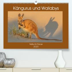 Kängururs und Wallabys (Premium, hochwertiger DIN A2 Wandkalender 2020, Kunstdruck in Hochglanz) von Smith,  Sidney