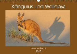 Kängururs und Wallabys (Wandkalender 2018 DIN A3 quer) von Smith,  Sidney