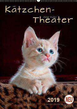 Kätzchen – Theater (Wandkalender 2019 DIN A2 hoch) von Roder,  Peter