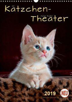 Kätzchen – Theater (Wandkalender 2019 DIN A3 hoch) von Roder,  Peter