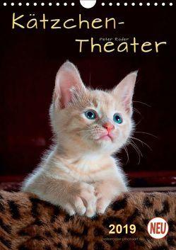 Kätzchen – Theater (Wandkalender 2019 DIN A4 hoch) von Roder,  Peter