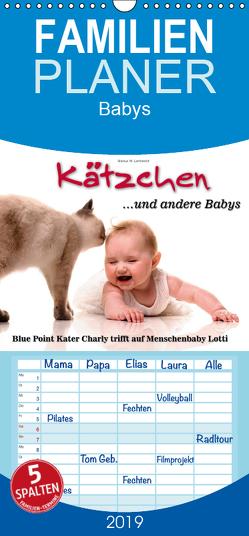 Kätzchen und andere Babys – Familienplaner hoch (Wandkalender 2019 , 21 cm x 45 cm, hoch) von W. Lambrecht,  Markus
