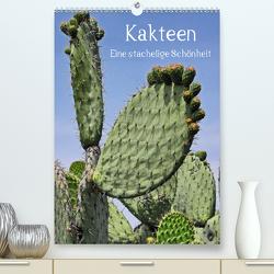 Kakteen – Eine stachelige Schönheit (Premium, hochwertiger DIN A2 Wandkalender 2021, Kunstdruck in Hochglanz) von Hornecker,  Frank