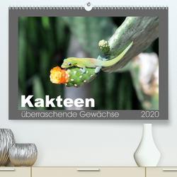 Kakteen – überraschende Gewächse (Premium, hochwertiger DIN A2 Wandkalender 2020, Kunstdruck in Hochglanz) von Bade,  Uwe