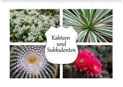 Kakteen und Sukkulenten (Wandkalender 2020 DIN A2 quer) von Gierok,  Steffen