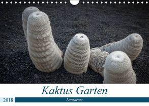 Kaktus Garten Lanzarote (Wandkalender 2018 DIN A4 quer) von Krieger,  Peter