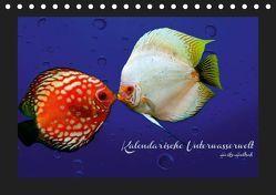 Kalendarische Unterwasserwelt (Tischkalender 2019 DIN A5 quer) von Hultsch,  Heike