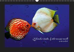 Kalendarische Unterwasserwelt (Wandkalender 2019 DIN A3 quer) von Hultsch,  Heike