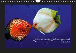 Kalendarische Unterwasserwelt (Wandkalender 2019 DIN A4 quer) von Hultsch,  Heike