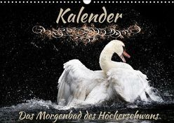 Das Morgenbad des Höckerschwans (Wandkalender 2019 DIN A3 quer) von Banker,  Sylvio