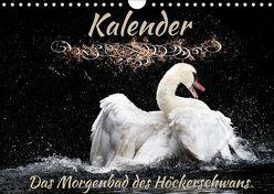 Das Morgenbad des Höckerschwans (Wandkalender 2019 DIN A4 quer) von Banker,  Sylvio