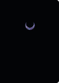 Kalender für mehr oder weniger ein Jahr von Darko,  Luna