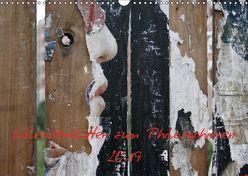 Kalenderblätter zum Philosophieren 2019 (Wandkalender 2019 DIN A3 quer) von Stolzenburg,  Kerstin