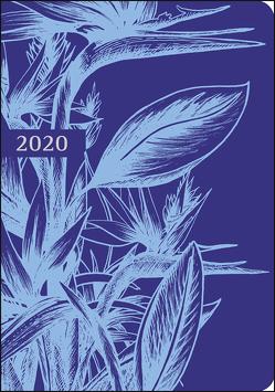 Kalenderbuch Strelitzie Kalender 2020 von Weingarten