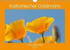 Kalifornischer Goldmohn (Wandkalender 2019 DIN A4 quer) von Bölts,  Meike